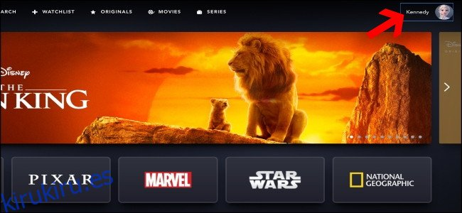 Cómo agregar y eliminar perfiles de usuario de Disney +
