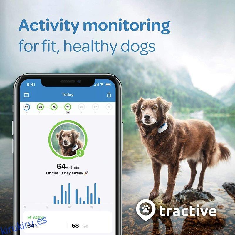Rastreador de perros Tractive LTE GPS